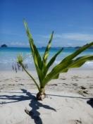 Indian ocean view from Selong Belanak beach, south Lombok