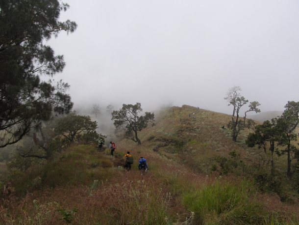 Savanna trek to the crater rim of Senaru, Mount Rinjani Lombok