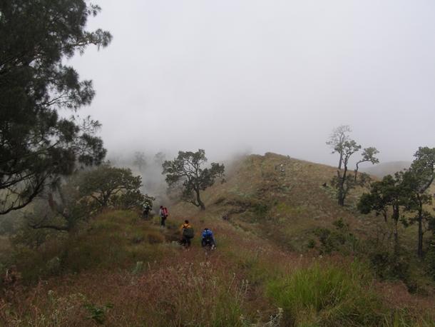 Savanna trek to the crater rim of Senaru, Mount Rinjani Lombok