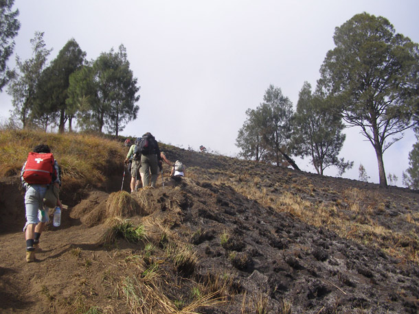 Trek trails to Senaru crater Rimfrom Senaru village