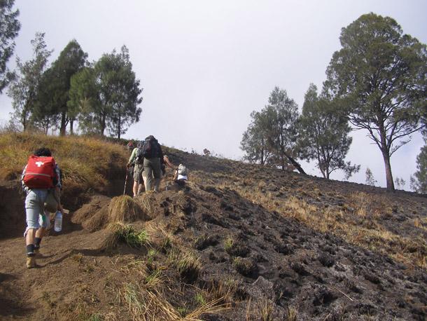 Trek trails to Senaru crater Rimfrom Senaru village
