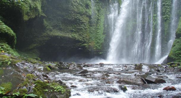 Sendang Gile and Tiu Kelep Waterfall Tour
